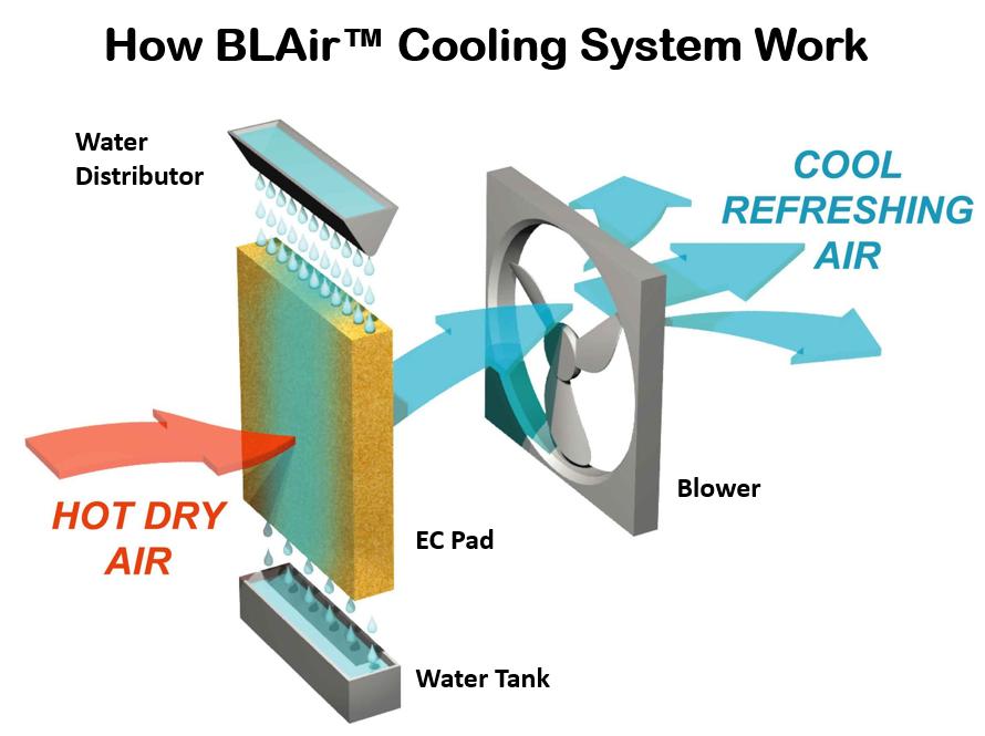 cooler process